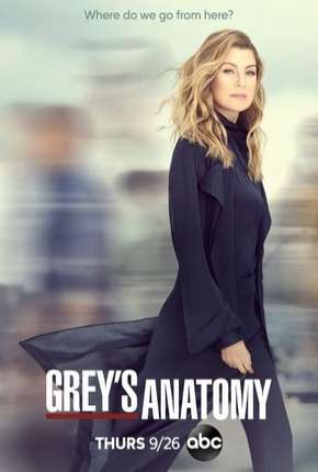 Série Greys Anatomy - A Anatomia de Grey 16ª Temporada Legendada
